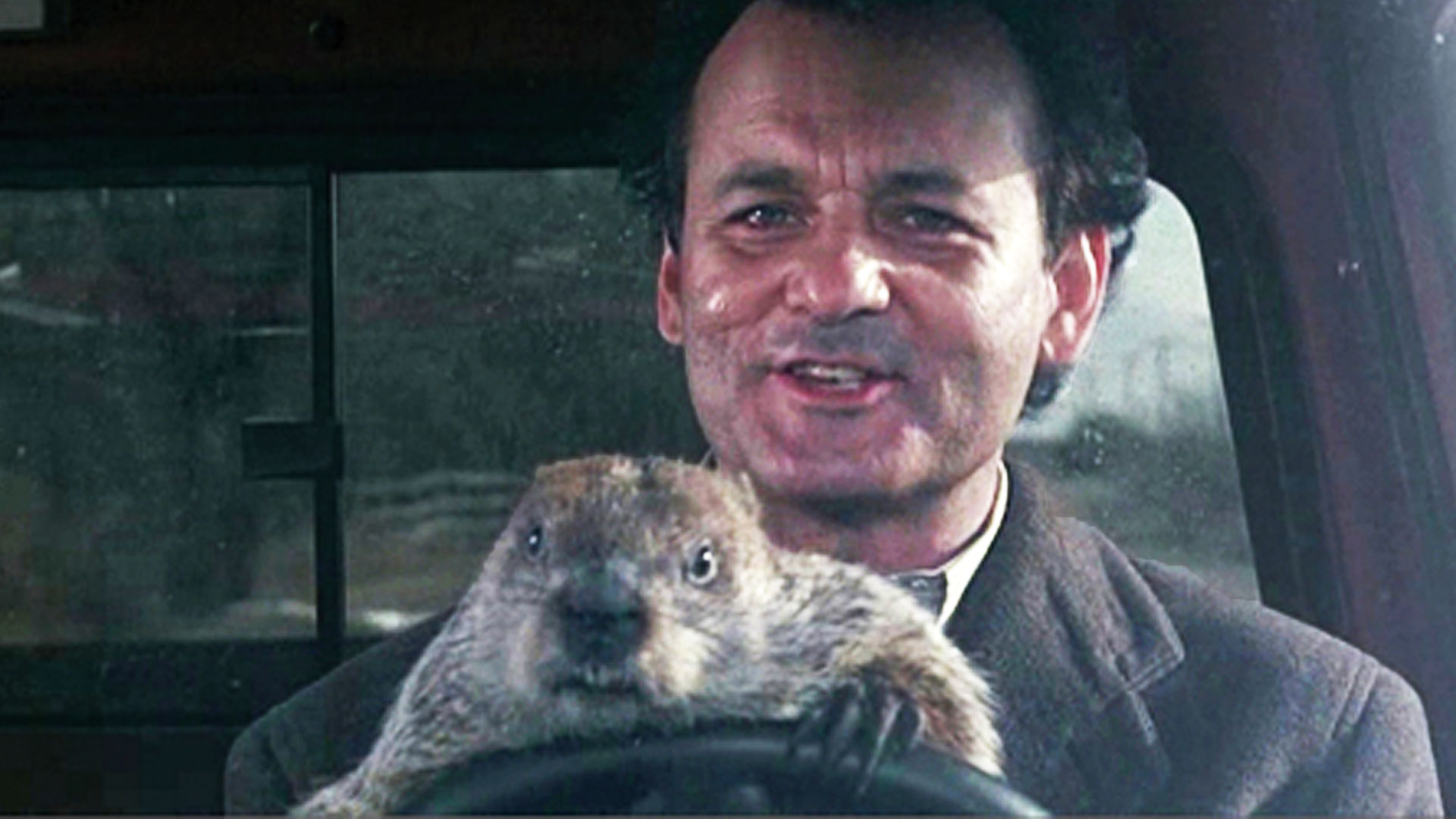 http://www.thecinemen.com/wp-content/uploads/2015/09/customerservice-groundhog-day.jpg