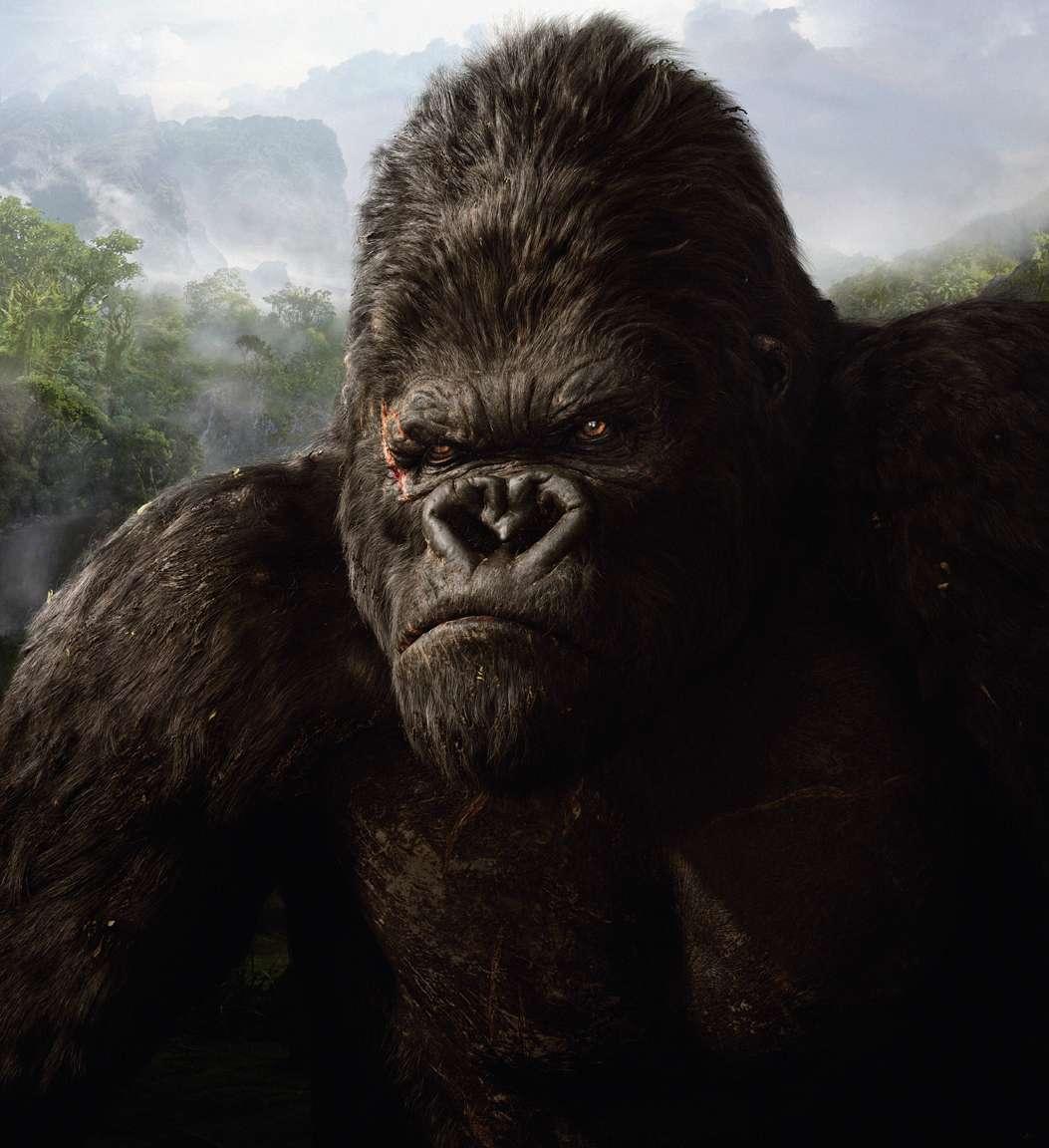 Seven Best Primate Movies